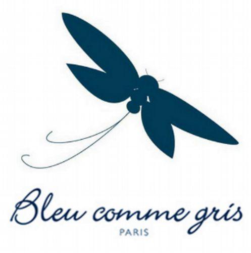 logo Bleu comme gris